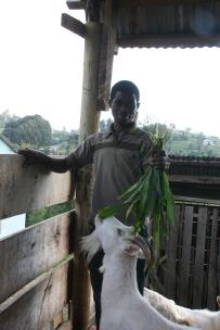 I tre år arbeidet Solomon og Erling med forskjellige prosjekter med geitebøndene, blant annet et fellesfjøs for melkegeiter som skulle organiseres av 6 fremstående geitebønder for opplæring av elever på barneskolen i Nyandira. Prosjektet var ikke vellykket, og i 2010 startet prosjektet med å gi en geit til låns for foreldreløse geitebønder. Bosco Paulo ble leder for den første gruppen på 16 foreldreløse geitebønder