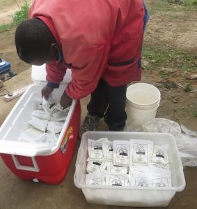 Over 500 pakker yoghurt ble levert til skolen