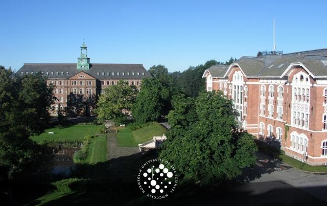 NBU campus
