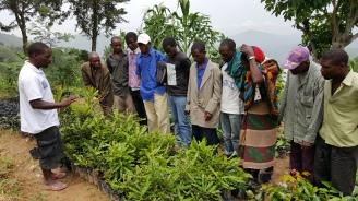 Solomon underviser bønder fra Lukunguni som vil drive skogslandbruk og dyrke Macadamianøtter