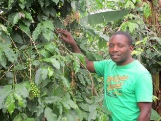 Solomon er sentral også i kaffeprosjektet som motivator før bøndene og bindeledd til rådgivere og eksportledd