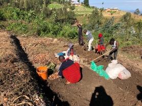 Emmaculata, Eston, Happy, Emmanuel og Jonathan i full sving med å etablere planteskole i Nyandira i juni 2018.