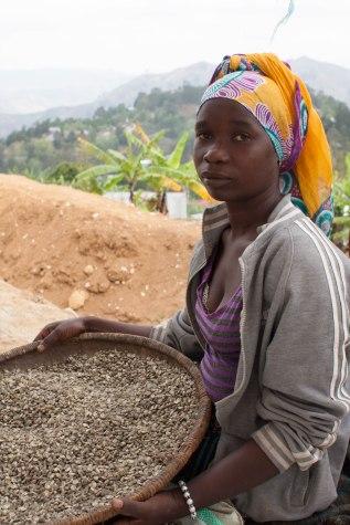Første rensing av kaffe foran internatet i Luale